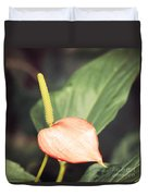 Vintage Anthurium Duvet Cover
