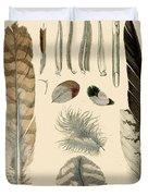 Vintage Feather Study-a Duvet Cover