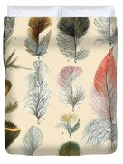 Vintage Feather Study-b Duvet Cover