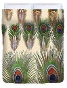Vintage Feather Study-jp2084 Duvet Cover