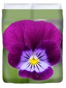 Viola Named Sorbet Plum Velvet Jump-up Duvet Cover