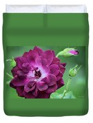 Violet Rose And Buds Duvet Cover