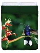 Violet Sabre-wing Hummingbird Duvet Cover
