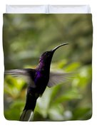 Violet Sabrewing At Cielito Sur Duvet Cover