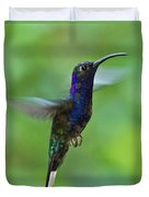 Violet Sabrewing Hummingbird Duvet Cover