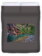 Virgin River Zion National Park Utah Duvet Cover
