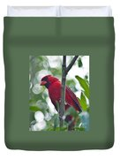 Vision In Red Duvet Cover