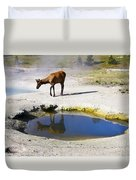 Visitor At West Thumb Basin Duvet Cover