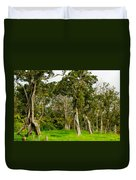 Volcano Ranch Duvet Cover