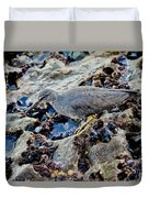Wadering Tattler At Low Tide Duvet Cover
