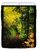 Walking An Autumn Path Duvet Cover