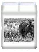 Wary Stallion Duvet Cover