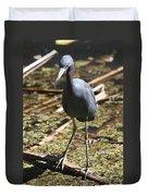 Watchful Little Blue Heron  Duvet Cover