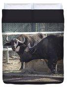 Water Buffalo - 2 Duvet Cover