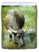 Water Buffalo Duvet Cover