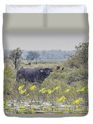 Water Buffaloes At Corroboree Billabong Duvet Cover