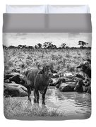 Water Buffaloes-black And White Duvet Cover