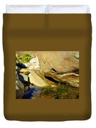Water In Oasis On Borrego Palm Canyon Trail In Anza-borrego Desert Sp Campground-ca  Duvet Cover