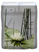 Water Lily Pictures 48 Duvet Cover