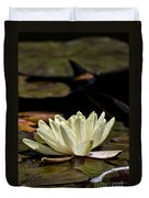 Water Lily Pictures 67 Duvet Cover