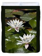 Water Lily Pictures 75 Duvet Cover