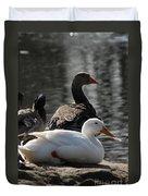 Waterbirds Duvet Cover