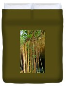 Waterfall Of Jungle Tree Roots Duvet Cover
