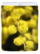 Wattle Flowers Australian Native Duvet Cover