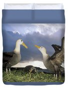 Waved Albatross Courtship Dance Duvet Cover