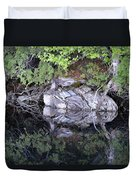 Weathered Reflection Duvet Cover
