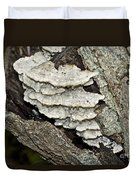 Weep No More My Baby - Bracket Fungi - Tyromyces Balsamea Duvet Cover