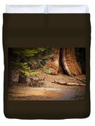 Welcome Home - Sequoia National Forest Duvet Cover