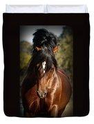 Welsh Cob Stallion Duvet Cover