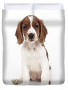 Welsh Springer Spaniel Dog Duvet Cover