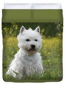 West Highland White Terrier Duvet Cover