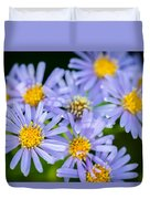 Western Daisies Asters Glacier National Park Duvet Cover