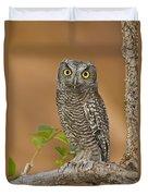 Western Screech Owl Juvenile Utah Duvet Cover