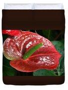 Wet Anthurium Duvet Cover