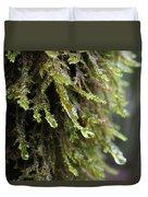 Wet Redwood Branches Duvet Cover