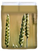 Wheat Stalks Duvet Cover