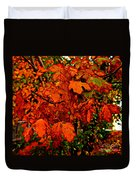 Where Has All The Red Gone - Autumn Leaves - Orange Duvet Cover