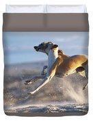 Whippet Dogs Fighting Duvet Cover