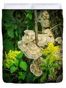 Whirled Turkey Fungus Duvet Cover