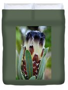 White And Brown Protea  Duvet Cover
