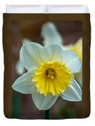 White And Yellow Daffodil Duvet Cover
