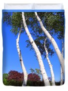 White Birch Blue Sky Duvet Cover