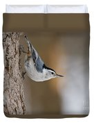 White-breasted Nuthatch Pictures 88 Duvet Cover
