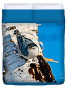 White-breasted Nuthatch Pictures 95 Duvet Cover