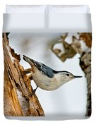 White-breasted Nuthatch Pictures 97 Duvet Cover