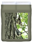 White Breasted Nuthatches Duvet Cover